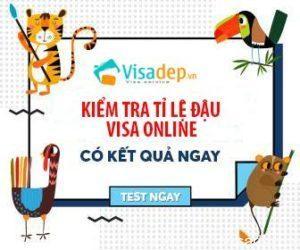 kiem tra ti le dau visa online