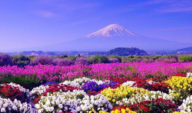 Một số địa danh nổi tiếng Nhật Bản