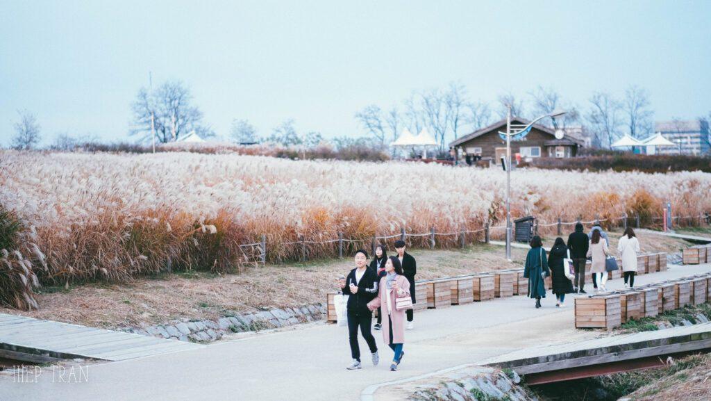công viên haneul